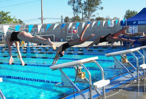 Despite loss to Rancho Bernardo, swimmers maintain excitement for season
