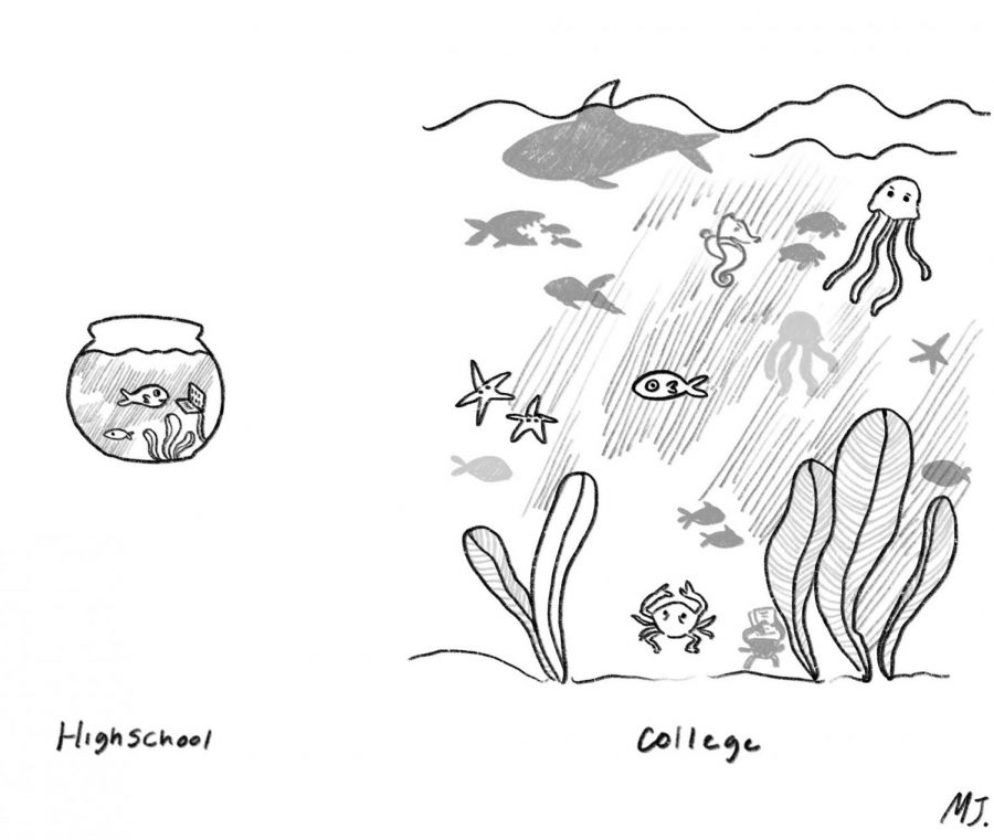 Opinion: I have the college jitters