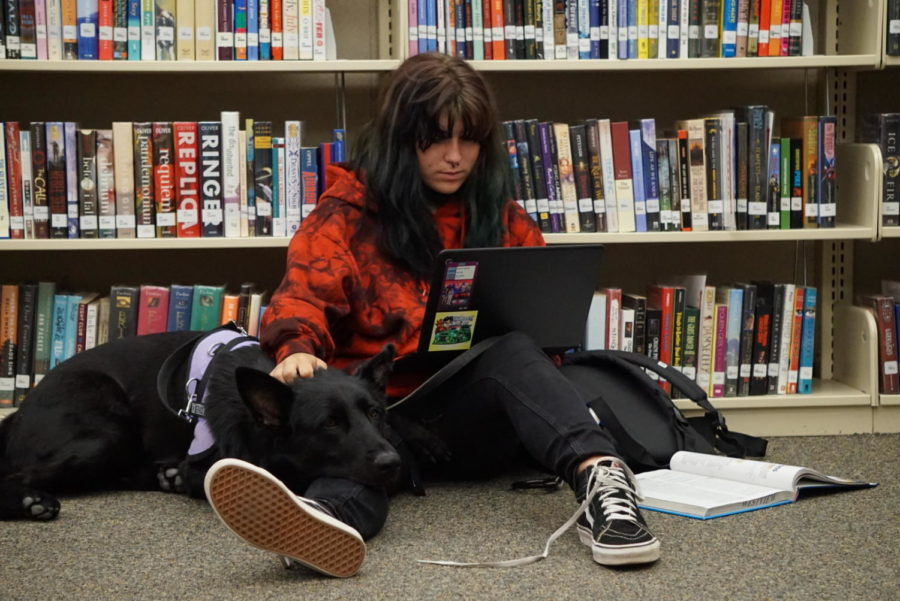 Kylie Roberts (12) sits with her service dog in the library while working on a homework assignment. After struggling with severe anxiety for most of her life, Roberts started bringing her service dog to campus to help her cope with the high-stress environment of school.